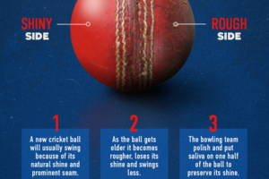 cricket-ball-seo-final