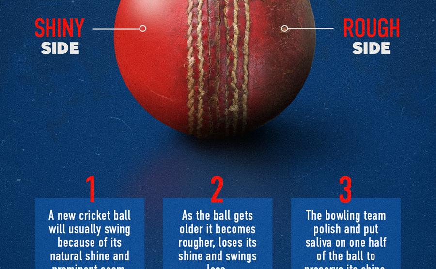 cricket-ball-seo-final